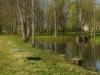 koluvere-linnus-023_1v
